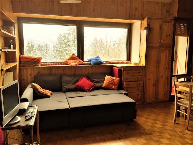 Abetone 6 posti letto 300 mt dalla Riva - Abetone - Apartment