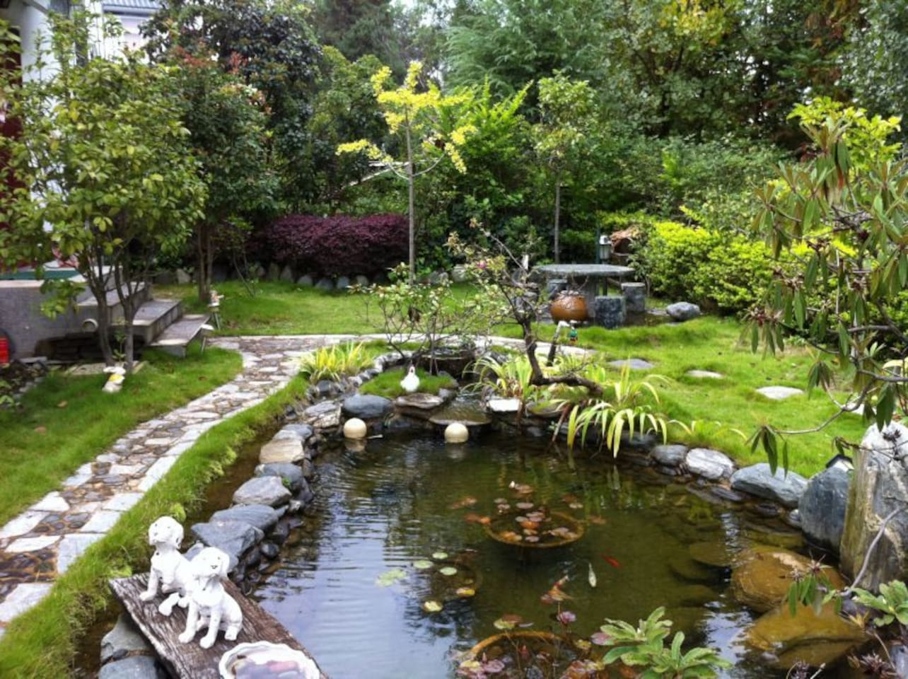 花园里的小池塘