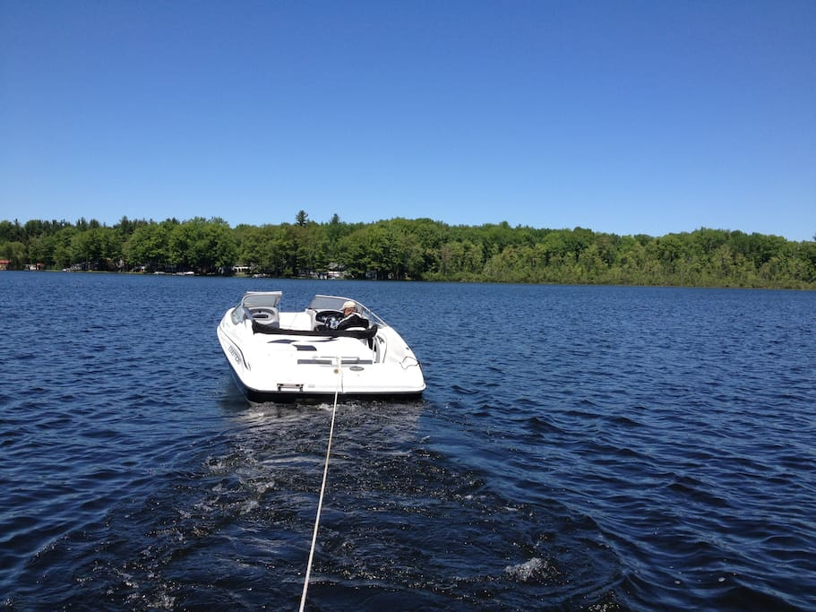 Bring your own boat - there is a public access/ boat launch on the west side of Halls Lake.