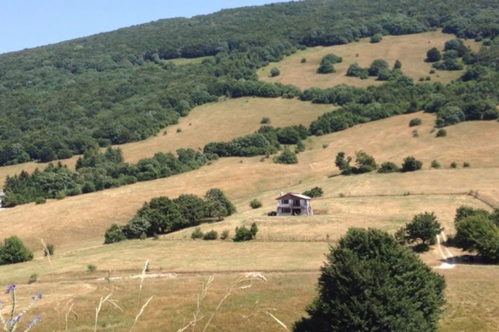La montagna in agosto