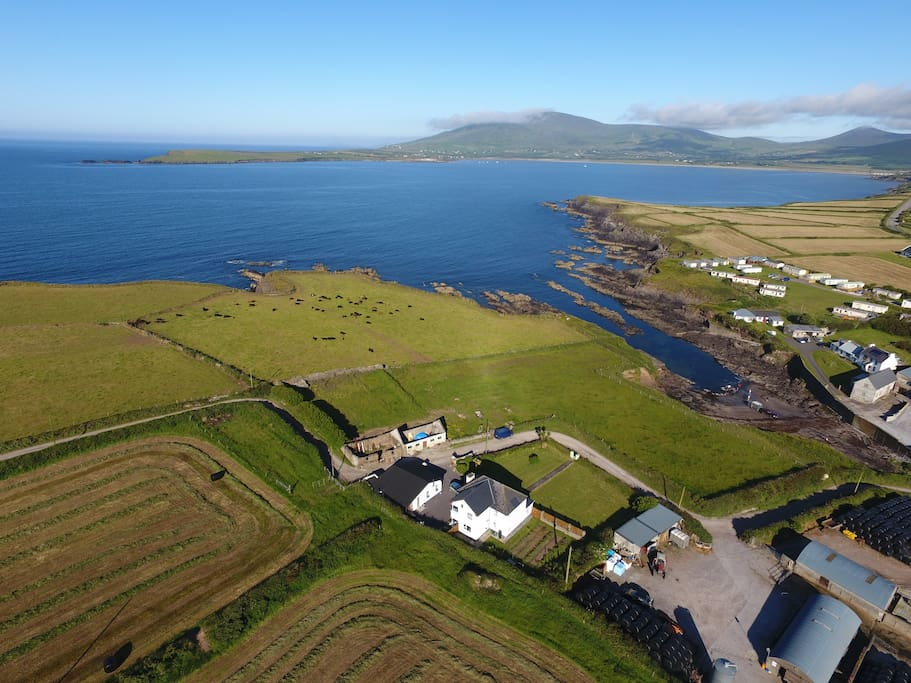 From the top! Looking out over Ventry Harbour - view our safe beach (strand) inlet