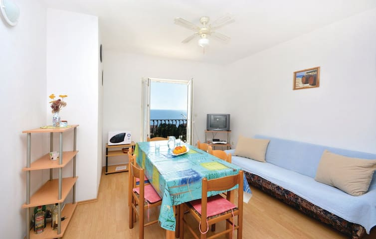 Double bedroom appartment with big terrace - Ivan Dolac - 公寓