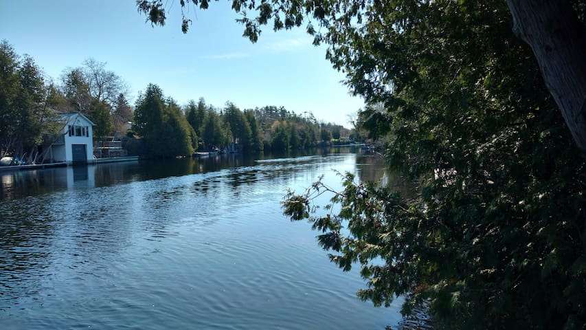 Fenelon River/Sturgeon Lake Seasonal Cottage - Lindsay - Kabin