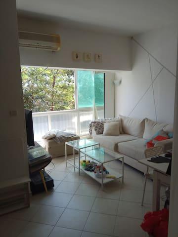 Central apartment TLV