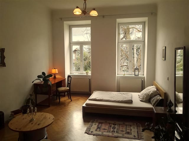 bright and cozy room near city center - Vienna - Leilighet