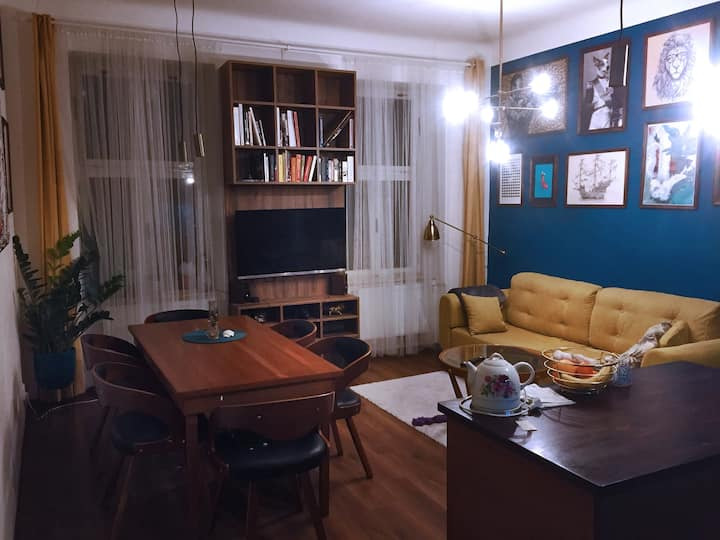 Cozy and large room (25m2) in the center