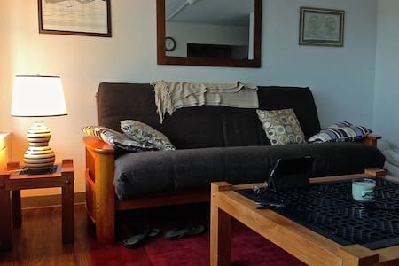 Large, Upscale Studio 1.5 Blocks from Diag w/ View - Ann Arbor - Apartment