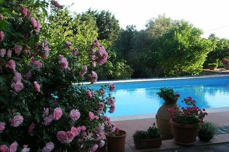 Comoda stanza con bagno in villa vicino a Roma - Formello - 别墅