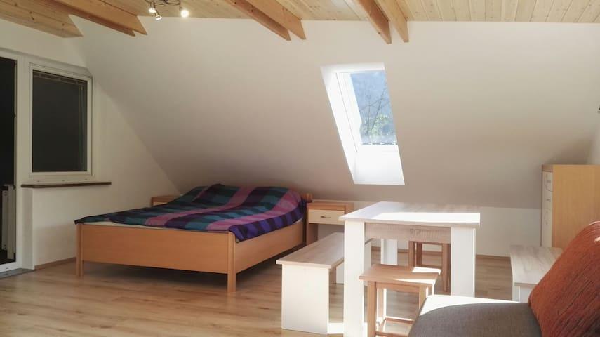 Lovely place to visit - Bled - Leilighet