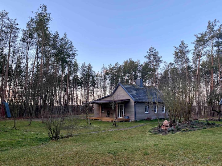 5* Luxury Stay in the Forest | Relax & Unwind