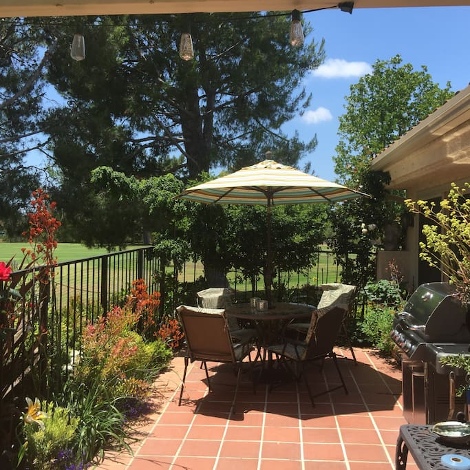 Gorgeous garden patio with gas BBQ grill