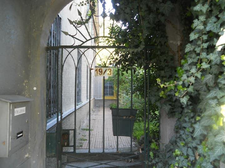 romantic garden/lemon-tree - my home in Vienna