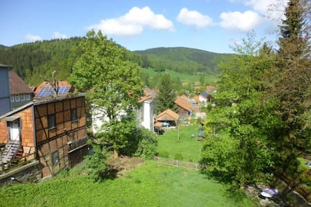 House At The Forest - Langelsheim - Apartmen