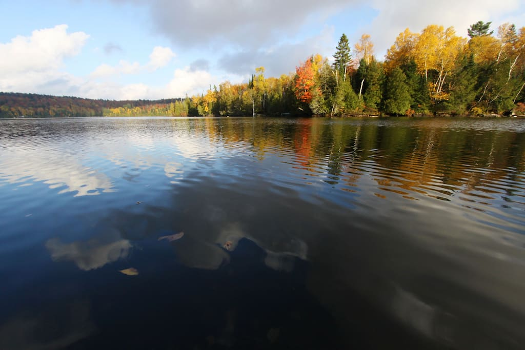 Fall Colours on Oxbow Lake