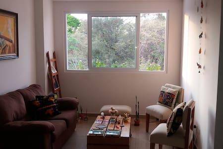 Habitación doble-depto. compartido - Panama City