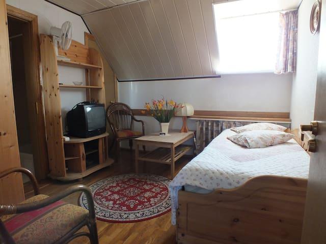 Villa Žvejų 29 - Basic Double Room