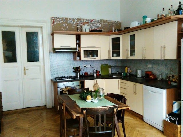 Spacious room in huge flat (115 m2) - Prague - Apartment