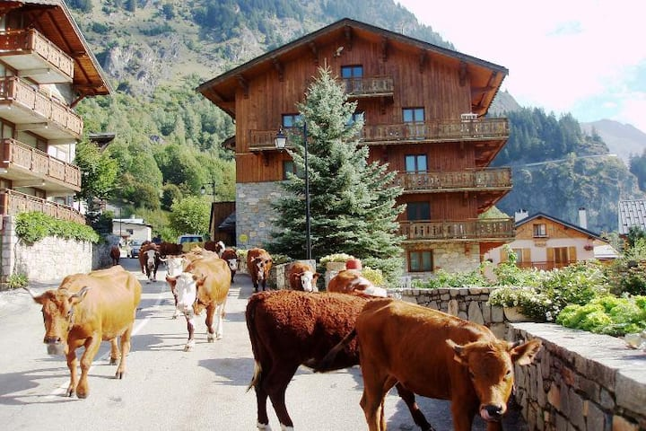 Chalets du Bouquetin - Hermine (2 to 4 people)