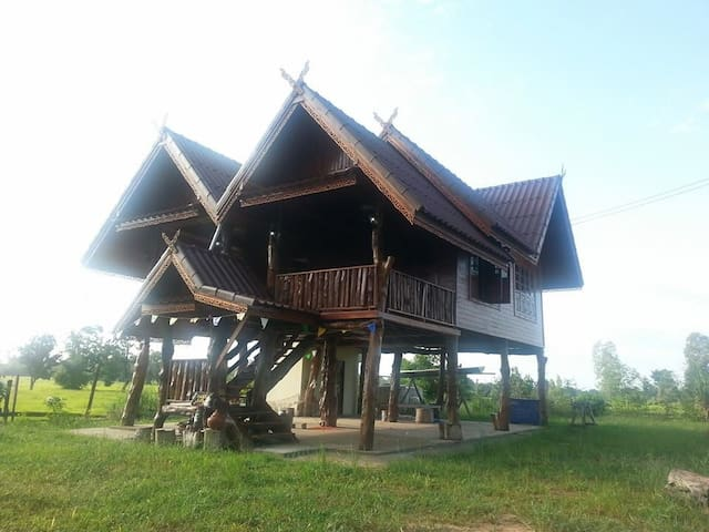 Traditional Thai house in ricefield - sanom  - Cabana