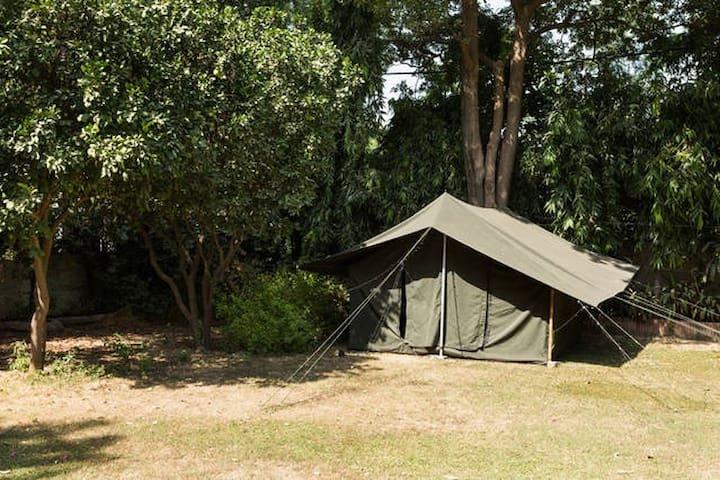 Tent in beautiful house in Sainik Farms