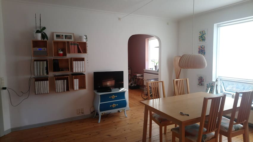 Large apartment less than 20 min. from city center