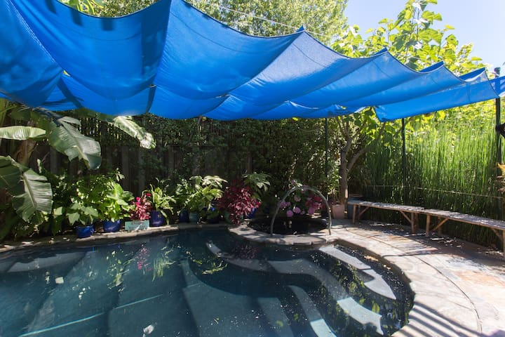 Cabana with Warm Watsu Pool - San Jose - Guesthouse