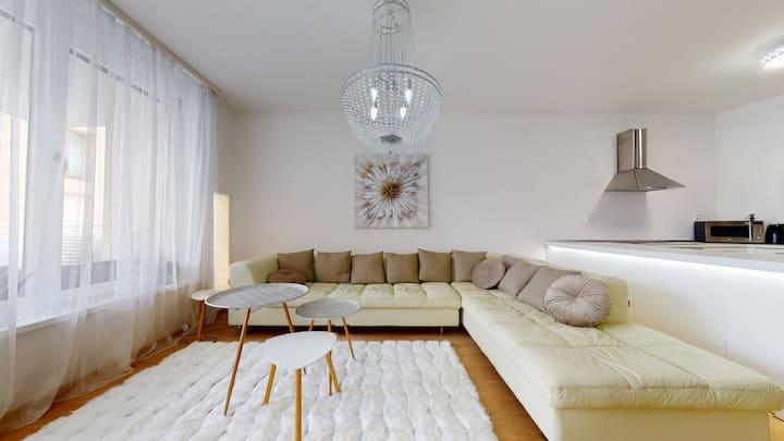 Apartment Puma v centre Piešťan