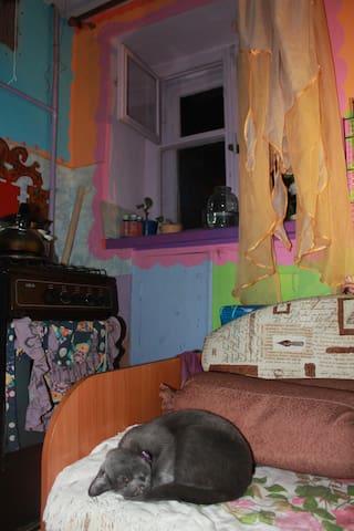 Предлагаю уютную квартиру посуточно - Cheboksary - Huoneisto