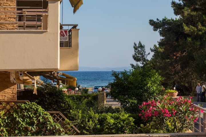 Stylish beach house by the sea