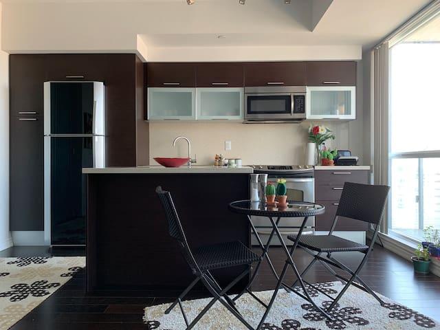 Luxury 1 bedroom condo in downtown for OCTOBER