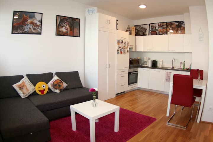 Trendy Danube Apartment - Airconditioned - Central