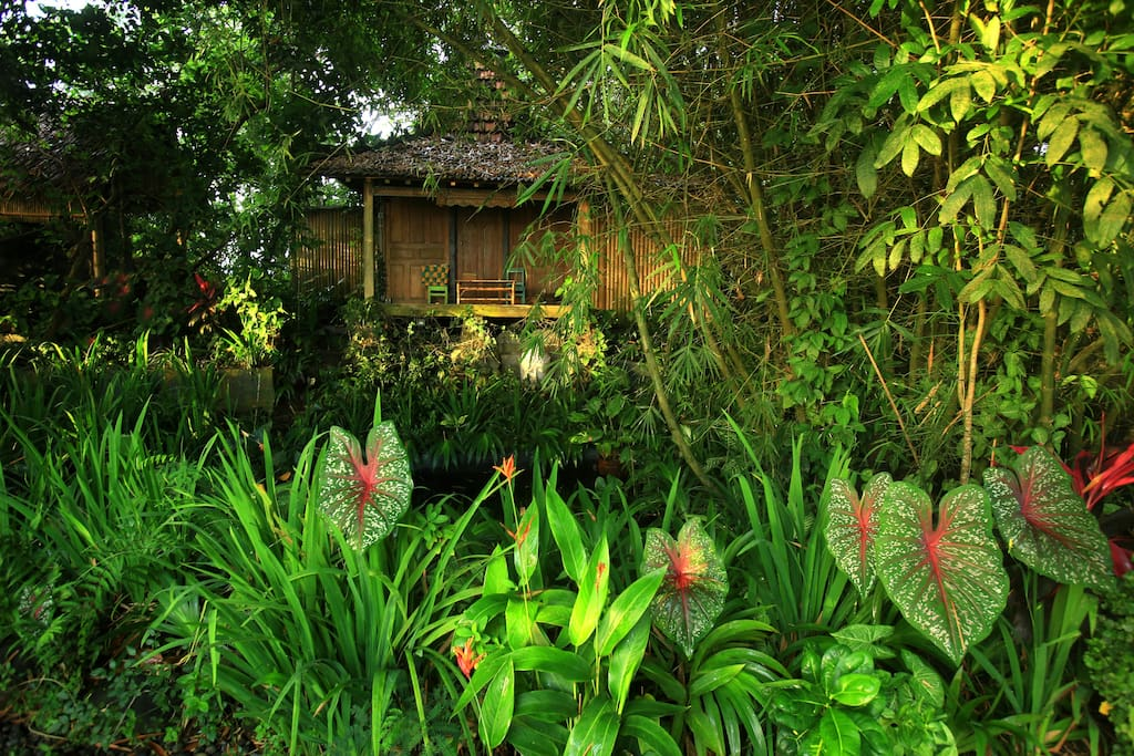 Find homes in Special Region of Yogyakarta on Airbnb