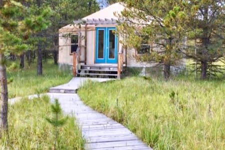 Gorgeous Off-Grid Yurt | Foothills of the Rockies
