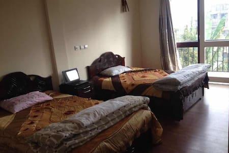 亚的斯亚贝巴家庭宾馆 - Addis Ababa - Bed & Breakfast