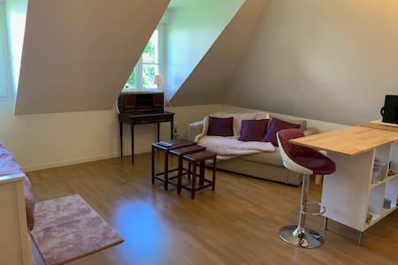 Studio bords de Seine  28 mn du centre de Paris