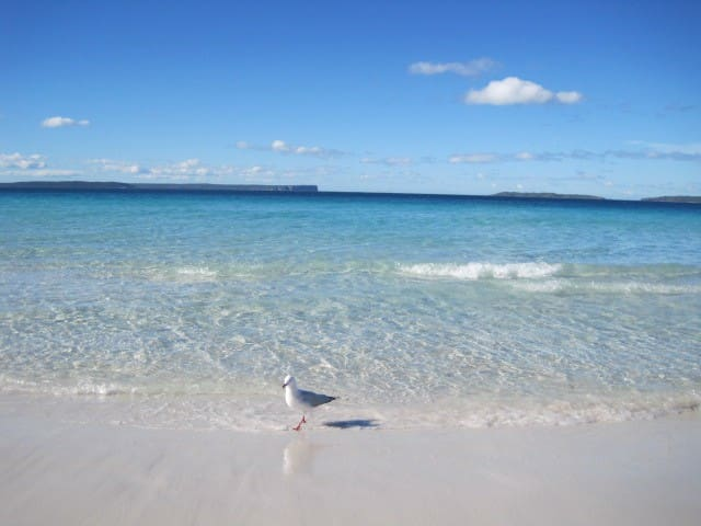 Hyams Beach: The whitest sand in the world!