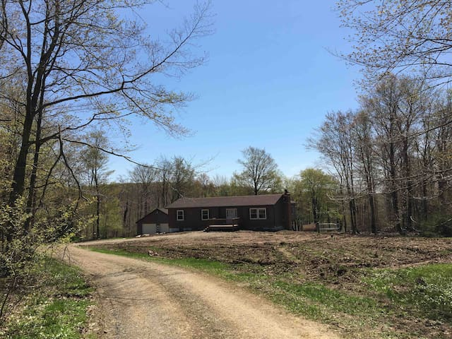 Potter County Woodland Getaway *pet friendly*