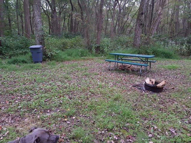 Gaia's Garden Grove 2