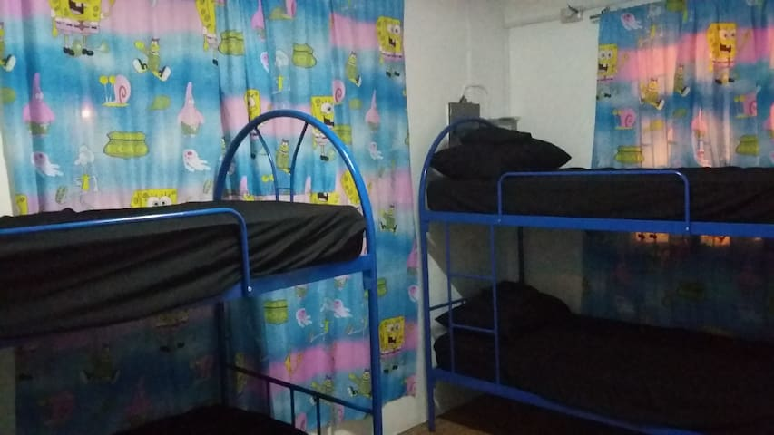 The Hollywood Hostel. Monthly Rooms Available.