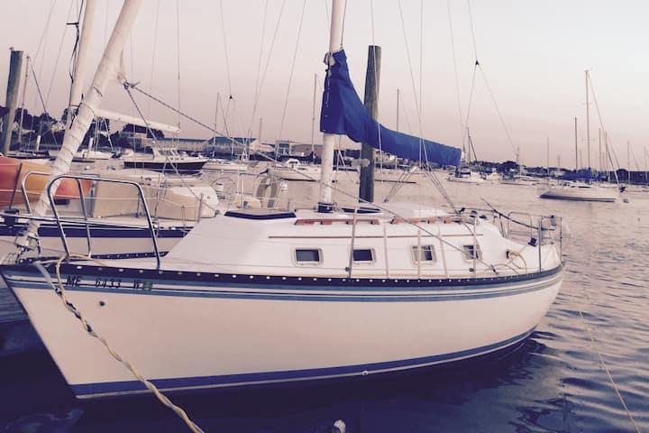 The Windseeker 27 ft Hunter w/Capt