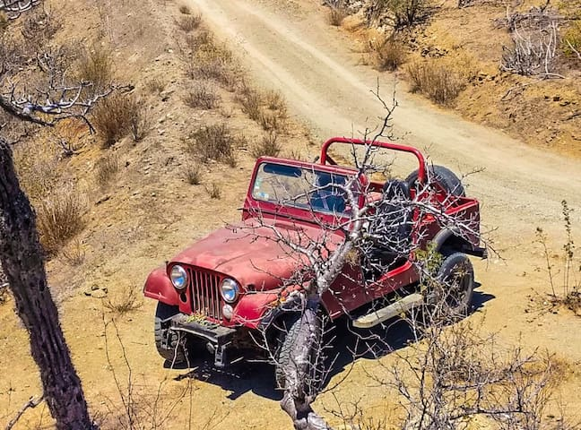 Ask  us about our 1985 Jeep Wrangler CJ-5 to rent it daily!