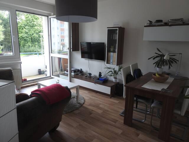 Helle 2-Raum-Wohnung in der Südstadt - Rostock - Wohnung