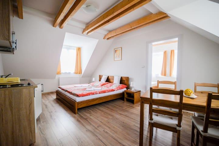 Apartments near the old town Cesky Krumlov