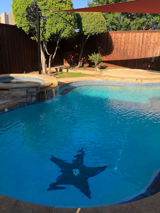 Pool with Texas Lone Star Detail.   Heated Pool & Jacuzzi by request only. Per day fee.