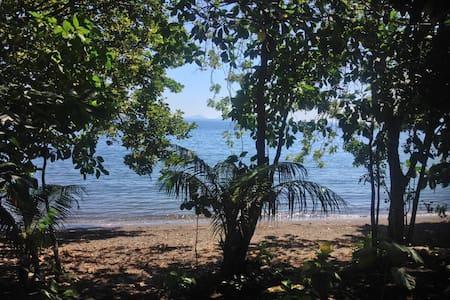 COCO PALM BUNGALOW - SUNSET BEACH WAIRTERANG