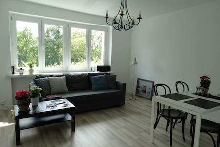 SPACIOUS, COMFORT, PARKING - Toruń - Appartement