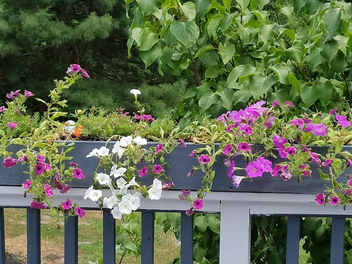 Rhinebeck's Serenity Guest House