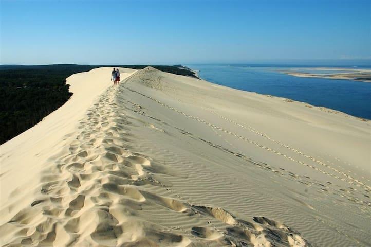La dune du Pylat, la plus haute dune d'Europe.