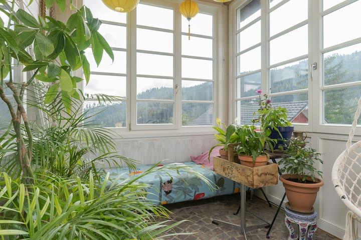 Wohnung mit viel Stil in herrschaftlicher Villa - Sankt Blasien - Pis