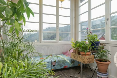 Wohnung mit viel Stil in herrschaftlicher Villa - Sankt Blasien - Apartment